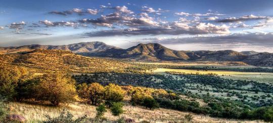 Campsite Details - Daily Entrance, Davis Mountains State Park, TX